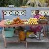 snack seller, Elephanta Island, just off the coast of Mumbai